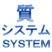 質システム